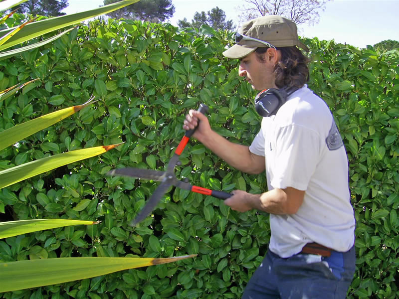 Sun paysage jardinier paysagiste anthony clar s for Jardinier paysagiste